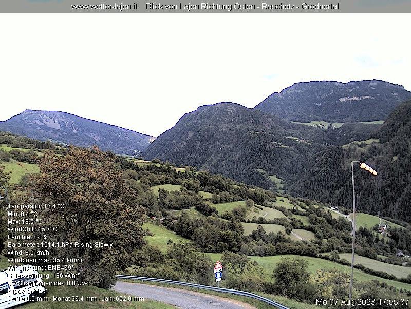 Webcam Laion